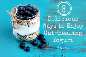 8 Delicious Ways to Enjoy Gut-Healing Yogurt