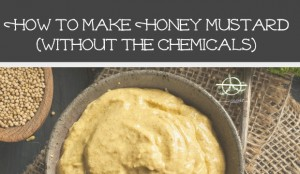 MakeIt@Home: How to Make Honey Mustard without the Chemicals