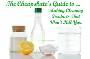 The Cheapskate's Guide to Making Cleaning Products That Won't Kill You