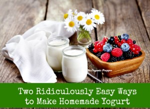 Two Ridiculously Easy Ways to Make Homemade Yogurt